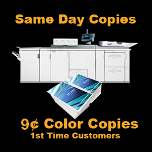 The Art Place Color Printing Of Business Cards